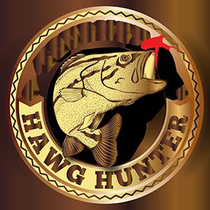 Hawg Hunters - Gold
