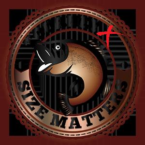 Size Matters - Bronze